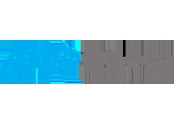 ALZ Chem